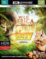 WILD AFRICA / TINY GIANTS 4K BLURAY