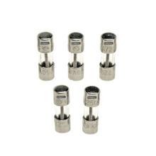 Rheem 46-22863-82 Fuses 2 Amp Glass Fast Act (5 Pack)