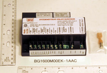 Baso GasProducts Ignition Module # BG1600M00EK-1AA