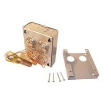 A.O. Smith 9004506205 Dual Control (192403)