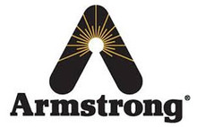 "Armstrong International 125A6 1 1/2"" 125# F & T"