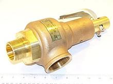 """Conbraco Industries 19-KHGA-100 1 1/2""""X2"""" 100#Steam 4602 PPH"""