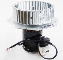 Reznor 162895 208/230V Venter Assembly