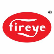 "Fireye NXCESO2-30 O2 Probe Assembly 30"" insert"