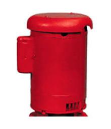 Xylem-Bell & Gossett 169220 5 HP Motor 3500 RPM