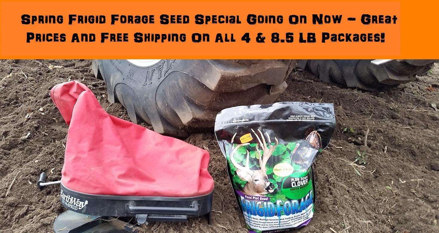 Frigid Forage Seed Sale