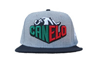 CA Eagle Sharp Snap Back