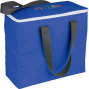 Arctic Zone® 30-Can Foldable Freezer Tote - 3860-02