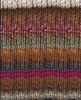 Noro Silk Garden 364 - Brown, Wine, Sand