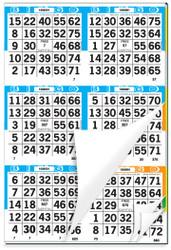 Capitol Plus Bingo Paper