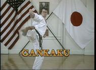 Gankaku Download
