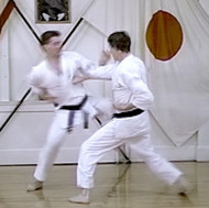 Sparring Concepts Jiyu-Ippon Kumite Download