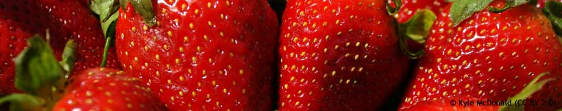 strawberries-kyle-mcdonald-cc-by-2.0-.jpg
