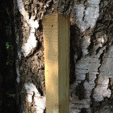 5ft square wooden tree stake