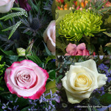 Flower selection in craft paper £25