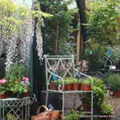 Iron Garden Furniture and Sundries