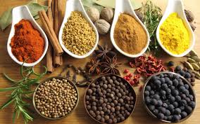 herbs-and-spices-cat-image.jpg