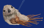 "Natural Bristle Twig Bird Ornament, Decor, 7 1/4"", #RGMTX44085"