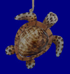 "Sea Shell Sea Turtle Ornament, 4 1/4"", CFORN71858"