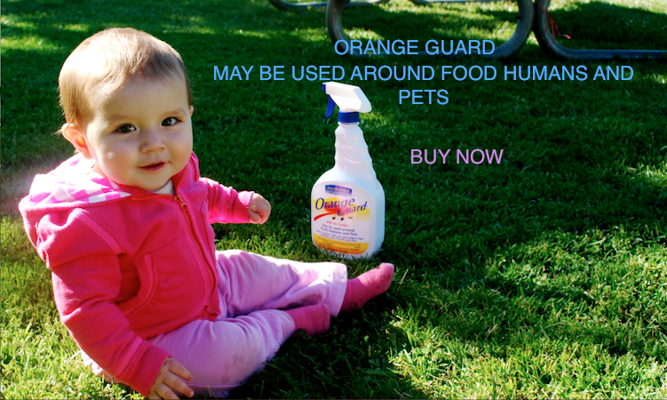 Orange Guard, Inc. All Natural Insecticide And Repellent