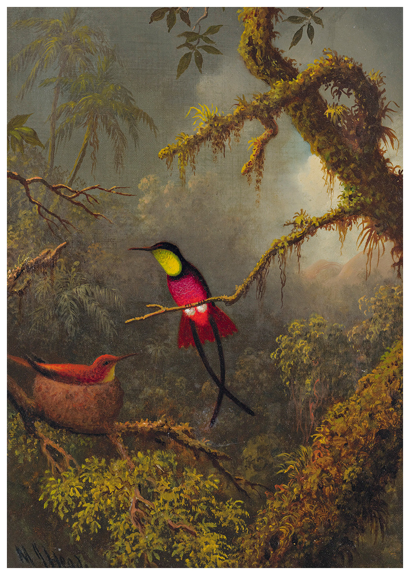 martin-johnson-heade-1819-1904-a-pair-of-nesting-crimson-topaz-hummingbirds2.jpg