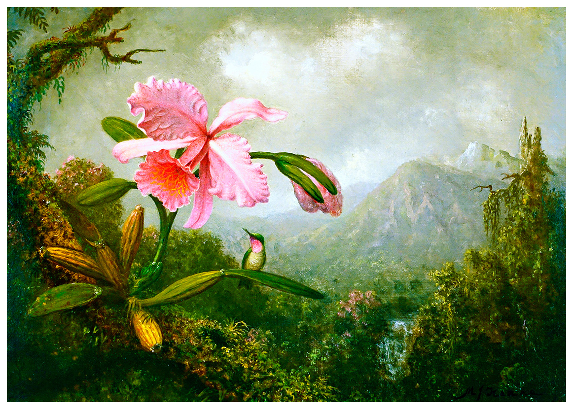 orchid-and-hummingbird-near-a-mountain-waterfall-by-martin-johnson-heade2.jpg