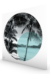 Palm Cove Stretched Canvas