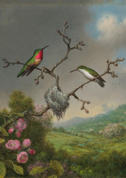 Hummingbirds and Apple Blossoms