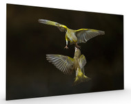 Flying Attack Stretched Canvas