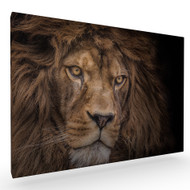 Brink of Extinction Stretched Canvas