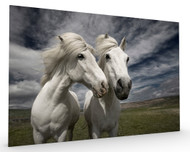 Inseparables Stretched Canvas