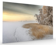 Misty Winter Morning Stretched Canvas