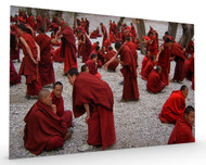 Monks Debating Stretched Canvas