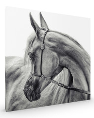 The Arabian Horse, Stretched Canvas
