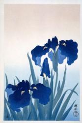 Irises by Watanabe Shozaburo