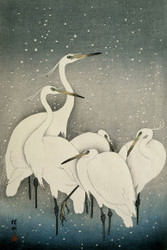 Group of Egrets by Watanabe Shozaburo