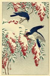 Fly on a Nandinastruik by Watanabe Shozaburo