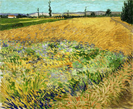 Wheatfield by Vincent van Gogh Giclee
