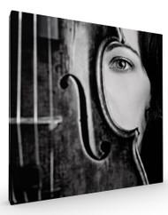 Stretched Canvas Vio by Oren Hayman