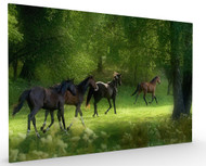 Running Horses by Allan Wallberg, Stretched Canvas