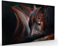 Sleep Huddle by Martin Stantchev, Stretched Canvas