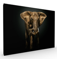 The Master, Elephant Wildlife Art Print by Pedro jarque, Stretched Canvas