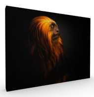 Chewbacca Wildlife Art Print by Pedro Jarque, Stretched Canvas