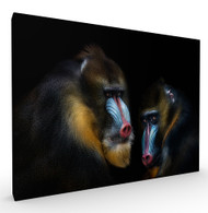 Conspiracy Wildlife Art Print by Pedro Jarque, Stretched Canvas
