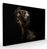 I Swear Wildlife Art Print by Pedro Jarque, Stretched Canvas
