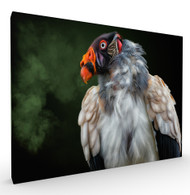 King Wildlife Art Print by Pedro Jarque, Stretched Canvas