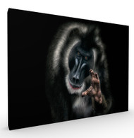 Make it a Double Wildlife Art Print by Pedro Jarque, Stretched Canvas
