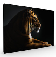 Mindfulness Wildlife Art Print by Pedro Jarque, Stretched Canvas