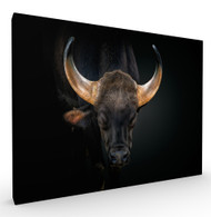Tameness Wildlife Art Print by Pedro Jarque, Stretched Canvas