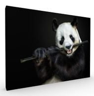 The Flute Master Wildlife Art Print by Pedro Jarque, Stretched Canvas